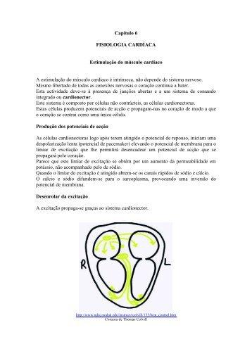 Capítulo 6 FISIOLOGIA CARDÍACA Estimulação do ... - WebBiblioteca