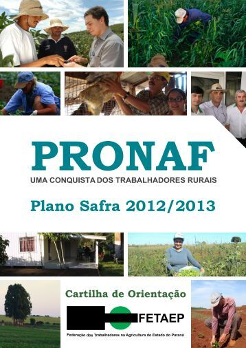 Plano Safra 2012/2013 - Federação dos Trabalhadores na ...