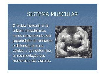 Microsoft PowerPoint - Aula 7 Sistema Muscular 1