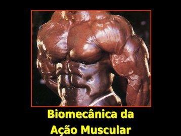 Biomecânica da Ação Muscular - Profedf.ufpr.br