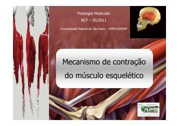 Aula 4 – Contração Muscular
