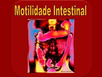 aulas fisiologia\5. digestivo\MOTILIDADE INTESTINAL 2012 ... - Unirio
