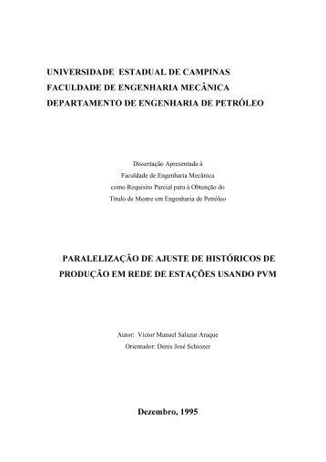 Dissertação Apresentada à Faculdade de Engenharia ... - Unicamp
