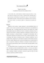 Electricidade solar - Universidade de Lisboa