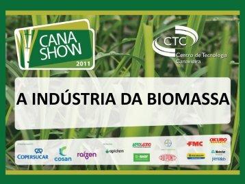 A INDÚSTRIA DA BIOMASSA - Cana Show 2012