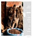 28 | Domingo 3 Junho 2012 | 2 - Guerrilla Food Photography - Page 4
