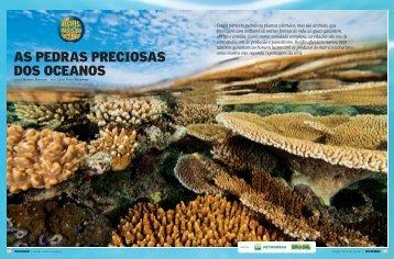 AS PEDRAS PRECIOSAS DOS OCEANOS - Terra da Gente