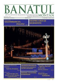 BanatulMontanNr.01 2007 Ianuarie.indd - Revista Banatul Montan
