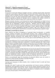 Raport 1 din etapa 2 - ICPA