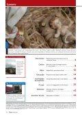 Loures Municipal 26 - FINAL.pmd - Câmara Municipal de Loures - Page 2