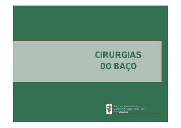Cirurgias do baço - Cirurgia Veterinária - UFBA