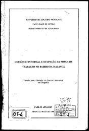 coniércio informal e ocupaçao da força de trabalho no bairro da ...