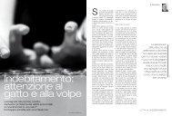 Indebitamento: attenzione al gatto e alla volpe - Caritas Ticino