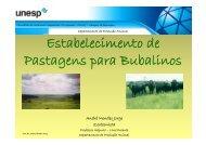 Estabelecimento de Pastagens para Bubalinos - Faculdade de ...