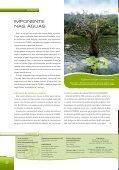 Julho - Cenibra - Page 2