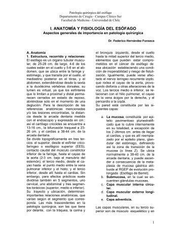 I. ANATOMÍA Y FISIOLOGÍA DEL ESÓFAGO - Reocities