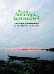 Diretrizes Estratégicas para o Desenvolvimento Sustentável ... - iirsa
