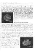 (Cretáceo Inferior), Nordeste do Brasil: Geologia e Paleontologia - Page 6