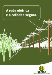Rede Elétrica e Colheita Segura - CERIPA