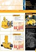 Bomba dosificadora de membrana hidraulica. General - Sistec - Page 5