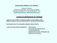 CAUSAS DA DEGRADAÇÃO DO CERRADO ... - CBH Paranaíba