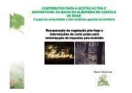 Incêndios Florestais: Contexto - Epal