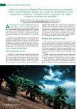 PALMEIRA REAL: opção sustentável para o agronegócio - Page 2