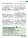 PALMEIRA REAL: opção sustentável para o agronegócio - Page 3