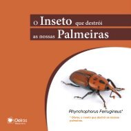 Rhynchophorus Ferrugineus* - Câmara Municipal de Oeiras