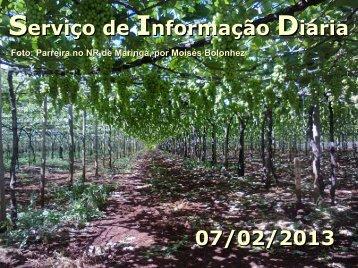 Serviço de Informação Diária 07/02/2013