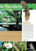 Jornal Ypioca.indd - Ypióca - Page 7