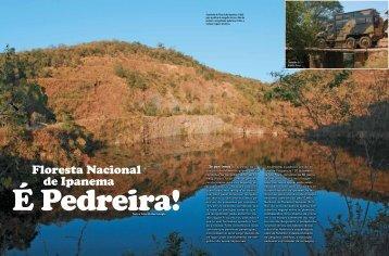Floresta Nacional de Ipanema
