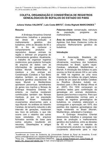 MODELO – RESUMO EXPANDIDO - Ainfo - Embrapa