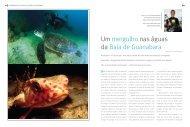 Um mergulho nas águas da Baía de Guanabara - Revista Linha Verde