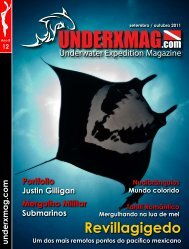 Download da underxmag 12 - Mergulho