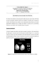 Notas Teóricas 05 - Universidade do Algarve