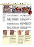 leilão - Leite Gir - Page 5