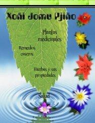 Plantas medicinales Salud