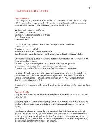 CROMOSSOMOS, MITOSE E MEIOSE - UFSC