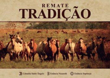 2) equinos - Cabanha Santo Ângelo