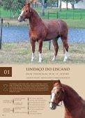 pág. 1 - fazenda liscano - Page 4