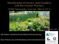 Maintenance for Swales, Rain Gardens and Stormwater Planters