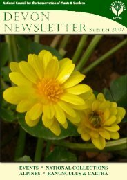 events * national collections alpines * ranunculus & caltha