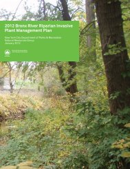 2012 Bronx River Riparian Invasive Plant Management Plan