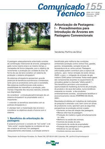 Arborização de Pastagens - Embrapa Florestas