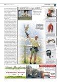 La falconeria - Page 3