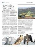 La falconeria - Page 4