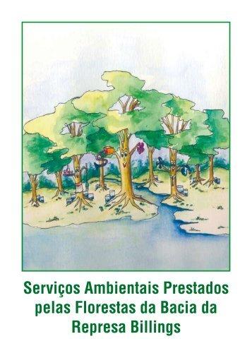 Serviços Ambientais Prestados pelas Florestas da Bacia da ...