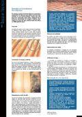 Coberturas - Construlink.com - Page 6