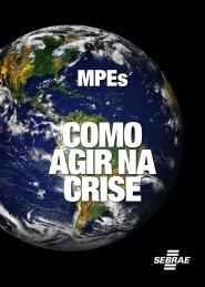 Como Agir na Crise - José Márcio Lemos